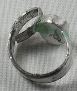 Ring Error